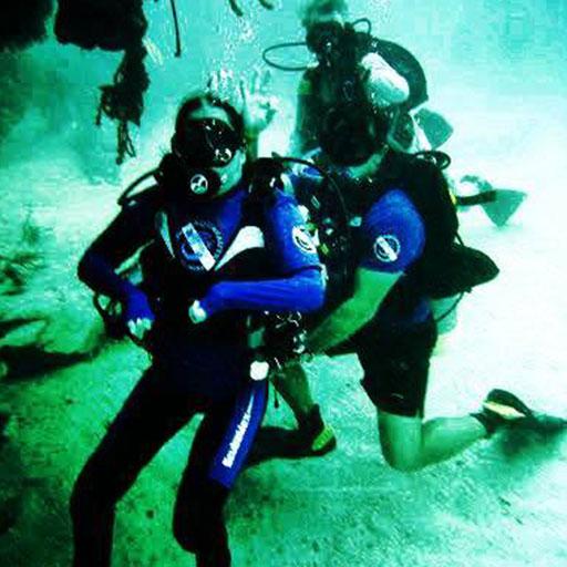 Dive-W